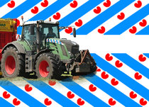 Friese Vlag Pré-Cut Decals