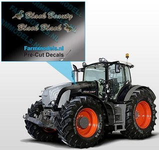 "2x ""Black Beauty"" sticker Bruin/ Goud op Transparant 3 x 21 mm Pré-Cut Decals 1:32 Farmmodels.nl"