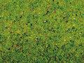 74447-Grasmat-Bloem-Weide-120-x-60-cm-(00270)