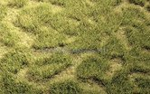 74113-Grasmat-wildgras-zomergras-45-x-17-cm-(HEK-01842)