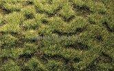 74114-Grasmat-wildgras-veengrond-45-x-17-cm-(HEK-01843)