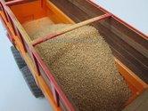 Maïs-korrels-200-gram-1:32-(23306)-LAST-ONES