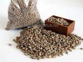 SuikerBieten-Beet-Juweela-ong.-150-gram--Juweela-23092